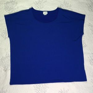 Beautiful blue Jaclyn Smith collection blouse